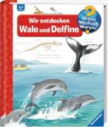 Ravensburger 32775 Wieso? Weshalb? Warum? 41: Wir entdecken Wale und Delfine