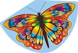 Günther Einleinerdrachen Papillon, 92 x 62cm
